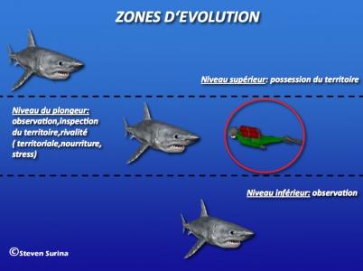 zone-evolution_schema