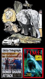 animaux_media