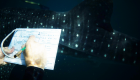whale shark close observation