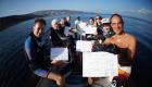 zodiak divers workshop