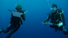 workshop diving course