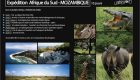 Mozambique expedition safari