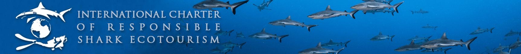 charte ecotourism header
