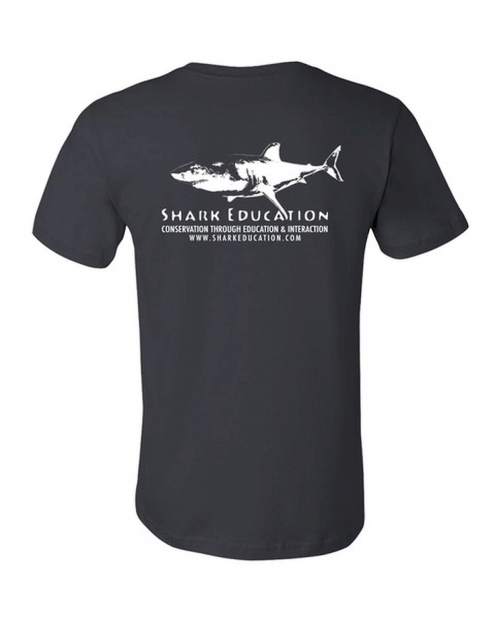 boutique tee-shirt shark education